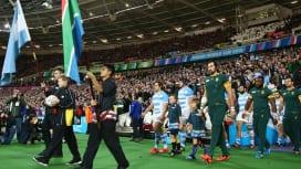 ラグビーワールドカップ2019日本大会 選手とともに入場するマスコットキッズの募集開始