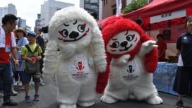 ラグビーワールドカップ2019日本大会 認知度の全国平均は過去最高の77%超