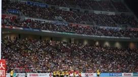 トップリーグ試合で初の観客3万超え トヨタ×サントリーで最多入場記録更新