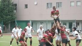 東京遠征の名護高が早稲田実業と練習試合 早実が12トライで大勝