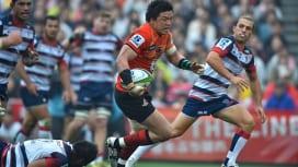 サンウルブズの来季ホームゲームは6試合東京開催に レベルズ戦は秩父宮で