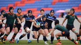 大阪のプライドをかけて 第97回全国高校大会決勝 東海大仰星×大阪桐蔭